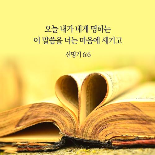 [크기변환]말씀카드_템플릿_복사본-004.png