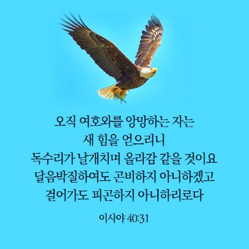 [크기변환]20210916_061456.png